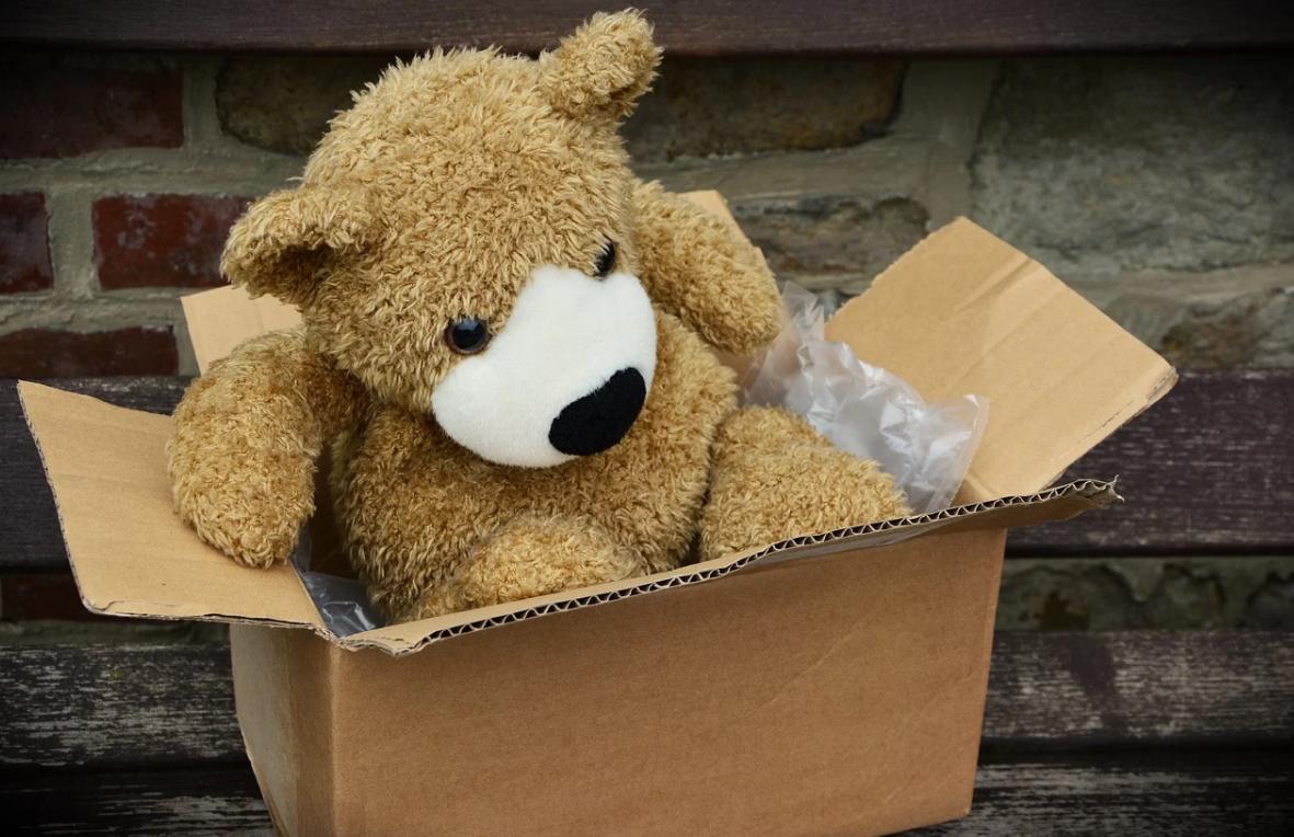 medvěd v balíku